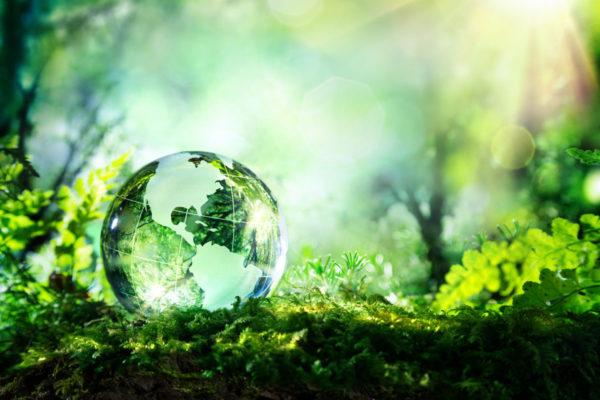 A beautiful green vous aide à obtenir le label ESR qui reconnaît les efforts des entreprises dans la gestion de leurs impacts ESG