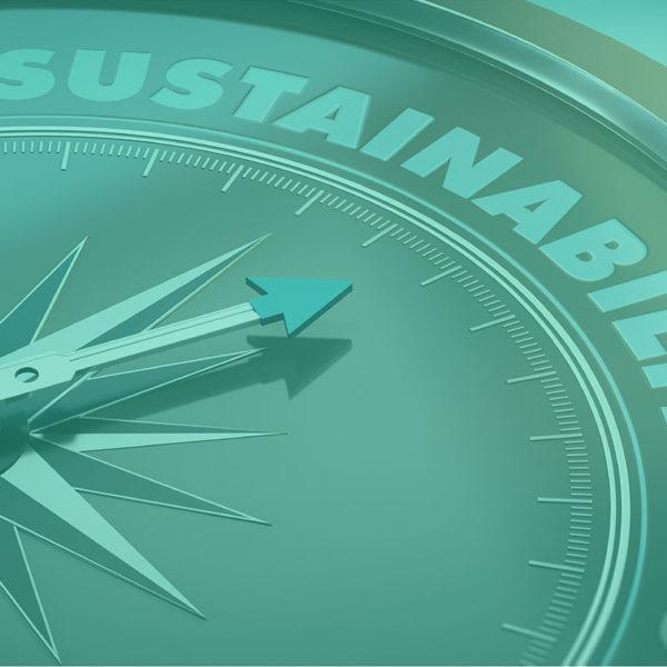 A beautiful green vous aide à mettre en place des actions durables pour un futur plus propre