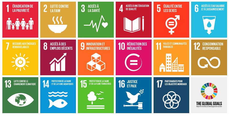 A beautiful green a pour mission de promouvoir le développement durable